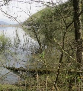 Lac du Flumet